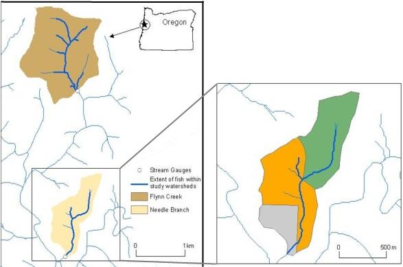 Alsea Oregon Map.Alsea Maps Watersheds Research